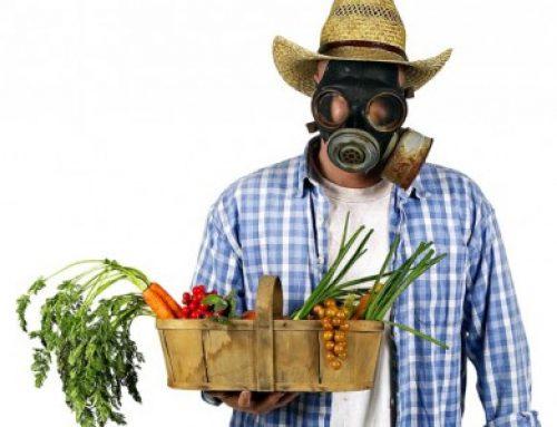 El Ayuntamiento de Madrid apoya la reducción de pesticidas en las zonas verdes