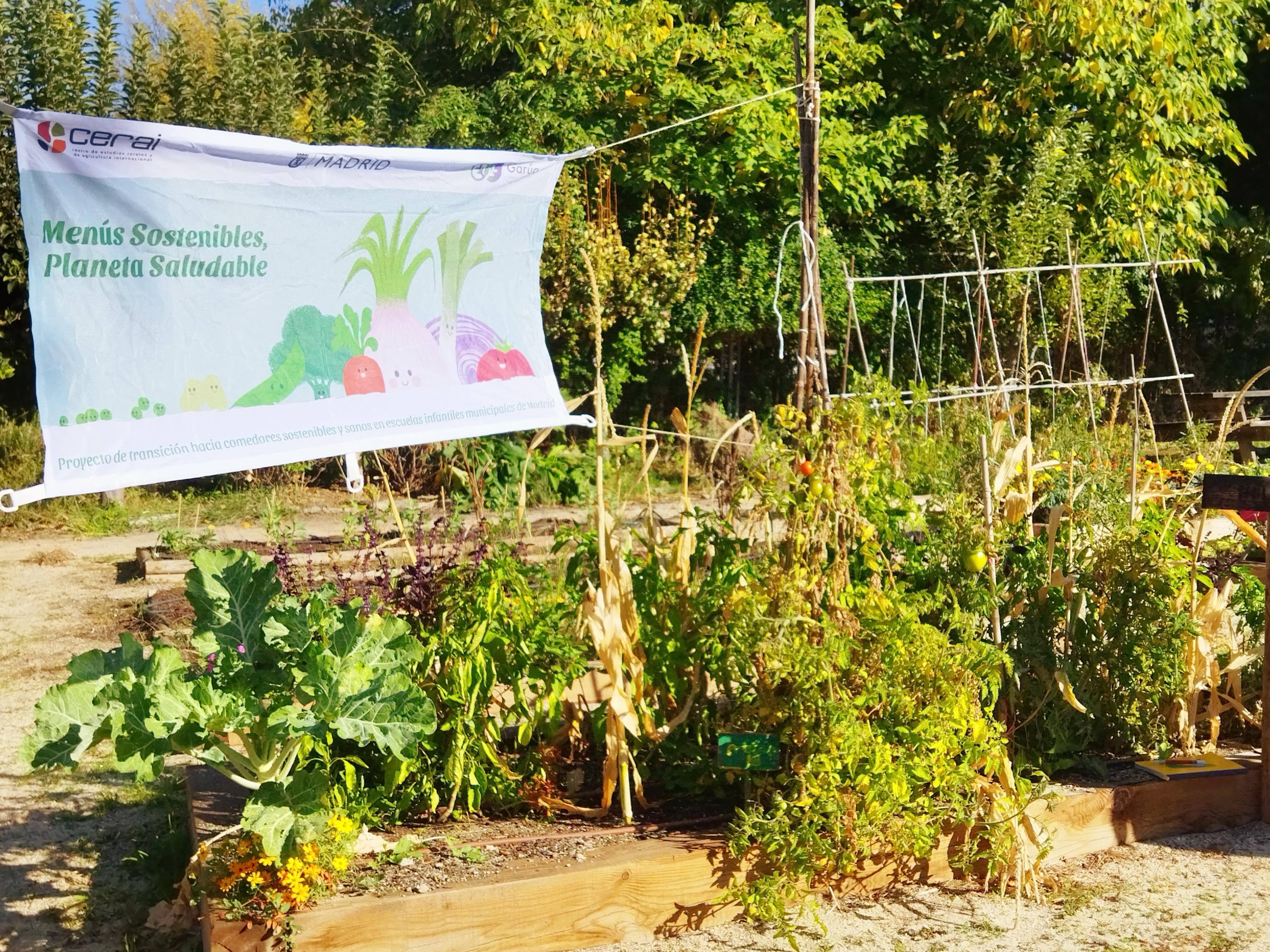 Motivadora presentación de la Fase 2 del proyecto Menús sostenibles, Planeta saludable